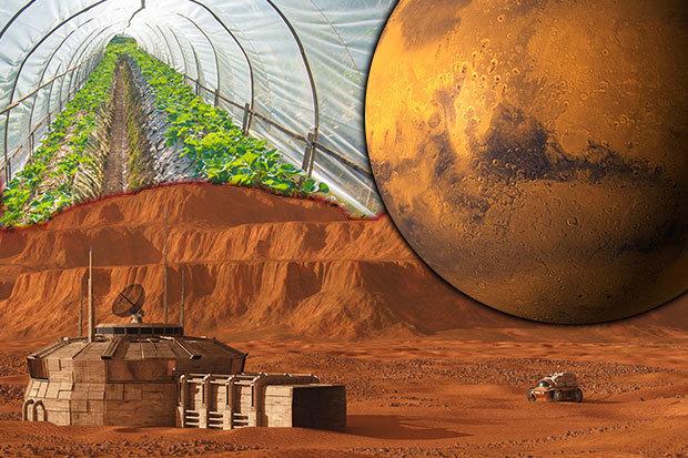 Mars-660414.jpg